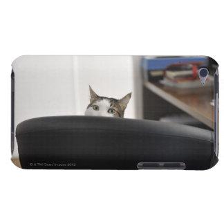 猫のオフィスの椅子のヘッド提示、近くに Case-Mate iPod TOUCH ケース