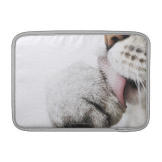 猫のクリーニングの足 MacBook スリーブ