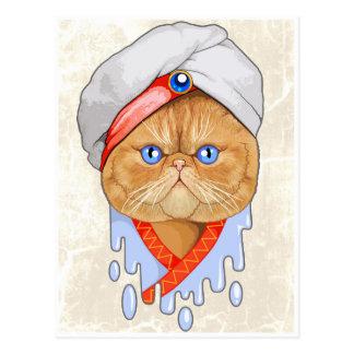猫のサルタン ポストカード