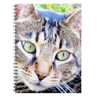 猫のノート ノートブック