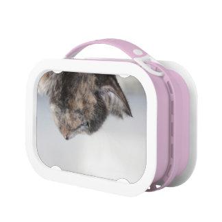 猫のポートレートが付いているお弁当箱 ランチボックス