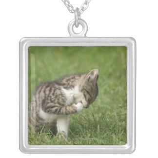 猫のポートレート シルバープレートネックレス
