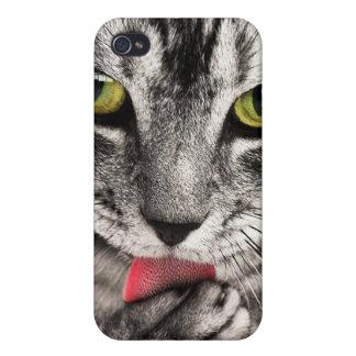 猫のポートレート iPhone 4/4S カバー