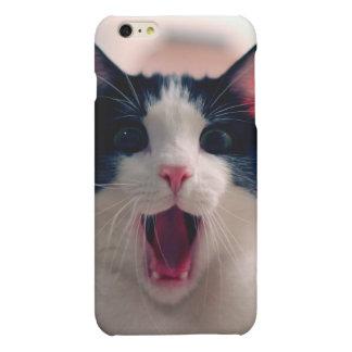 猫のミーム-おもしろいな猫-おもしろいな猫のミーム-ミーム猫