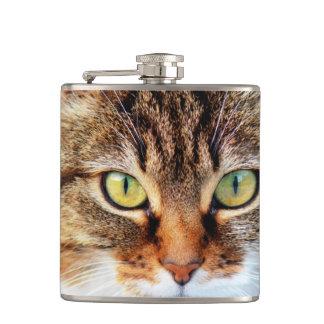 猫の写真 フラスク