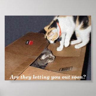 猫の刑務所ポスター ポスター