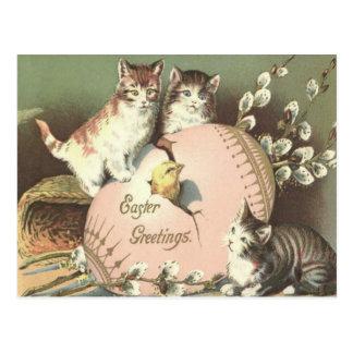 猫の子ネコのイースターによって着色される色彩の鮮やかな卵のひよこ ポストカード