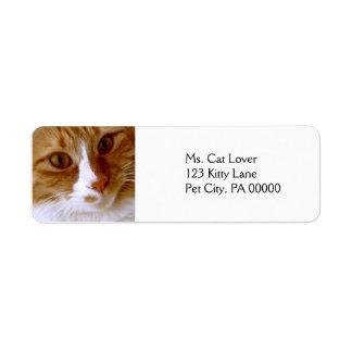 猫の差出人住所ラベルの上で閉めて下さい ラベル