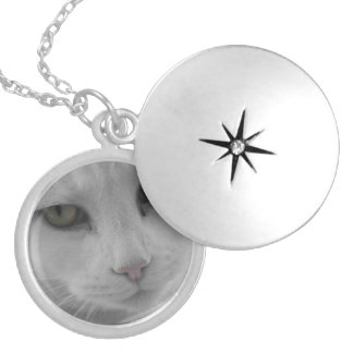 猫の思考 ロケットネックレス