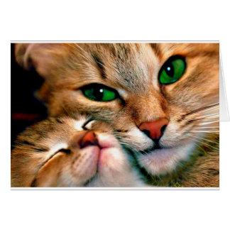 猫の抱擁 グリーティングカード