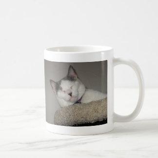 猫の昼寝 コーヒーマグカップ