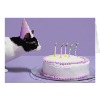 猫の蝋燭を吹く身に着けている誕生日の帽子 カード