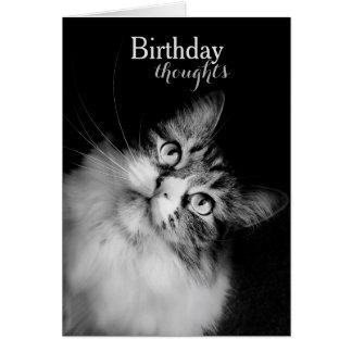 猫の見通し(カード)からの誕生日の思考 カード