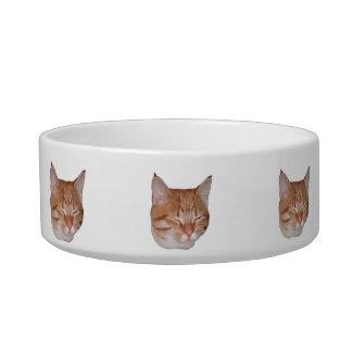 猫の顔食糧または水皿 ボウル