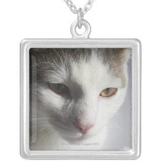 猫の顔 シルバープレートネックレス