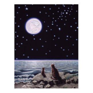猫の魚の月のライトによって ポストカード