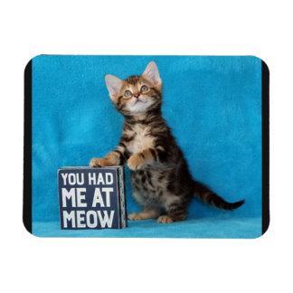 猫の鳴き声のベンガルの子ネコで私がありました マグネット