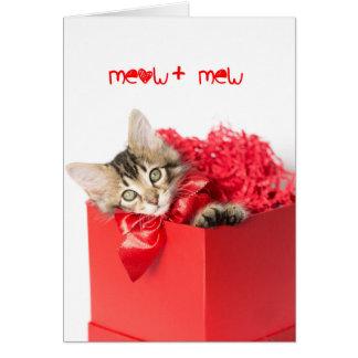 猫の鳴き声 + 子ネコは鳴きます カード
