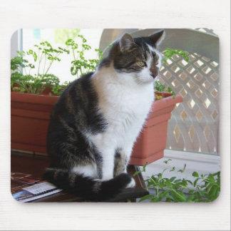 猫のmousepad マウスパッド