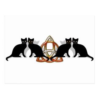 猫のPentgagramの炎Triquetra ポストカード