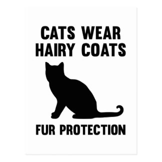 猫は毛深いコートの毛皮の保護を身に着けています ポストカード