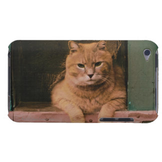 猫は窓辺で傾きます Case-Mate iPod TOUCH ケース