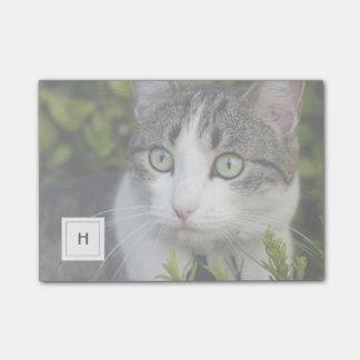 猫またはペット写真の名前入りなモノグラム ポストイット