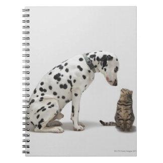 猫を見ている犬 ノートブック