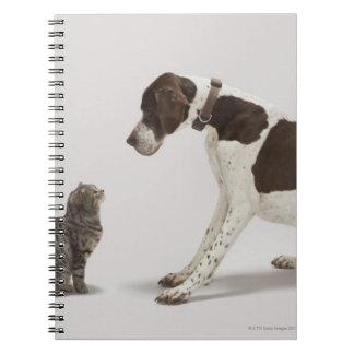 猫を見るポインター ノートブック