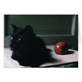 猫及びマンゴカード カード