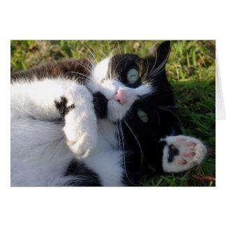猫好きカード カード
