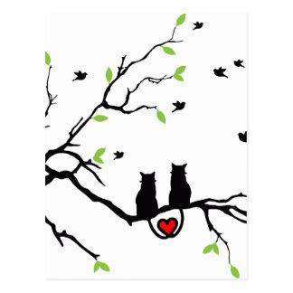 猫愛 ポストカード
