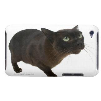 猫2のクローズアップ Case-Mate iPod TOUCH ケース