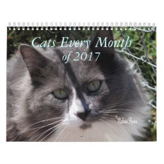 猫2017年の年-あらゆる年にカスタマイズ カレンダー