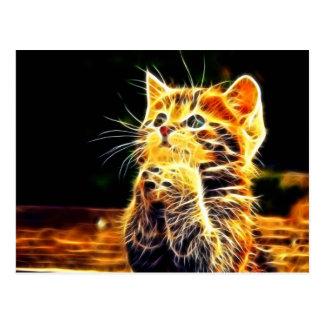 猫3dのアートワーク ポストカード