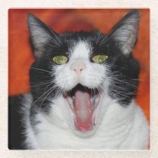 猫 ガラスコースター