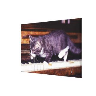 猫 キャンバスプリント