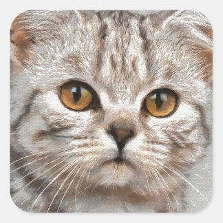 猫 スクエアシール