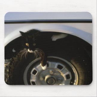 猫 マウスパッド