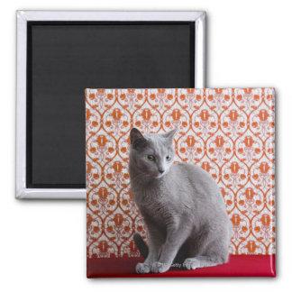猫(ロシアのな青)および壁紙の背景 マグネット