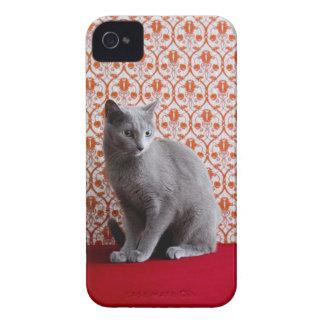 猫(ロシアのな青)および壁紙の背景 Case-Mate iPhone 4 ケース