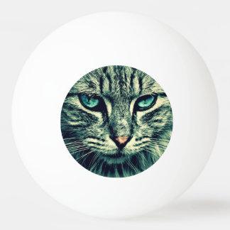 猫 卓球ボール