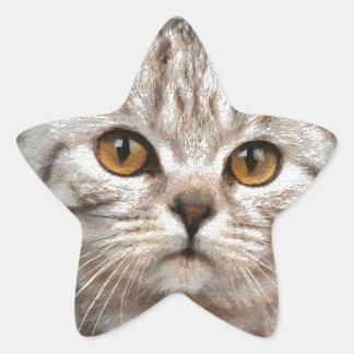 猫 星シール