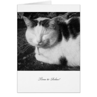 猫-空白のな退職カード--をリラックスする時間 カード