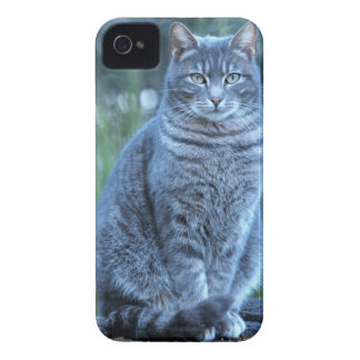 猫 Case-Mate iPhone 4 ケース