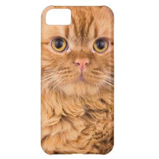 猫 iPhone5Cケース