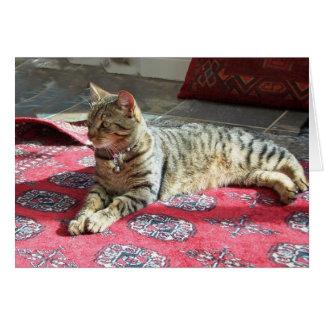 猫Notecard: Minnie Minx カード