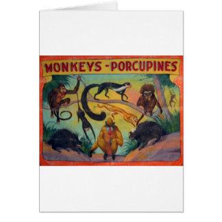 猿およびヤマアラシ カード