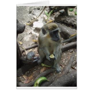 猿のつま先 カード
