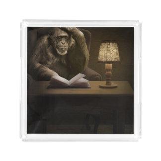 猿のチンパンジーのサル アクリルトレー
